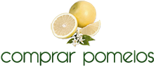 copy-Logo.png