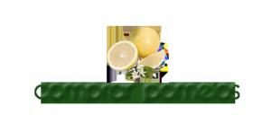 cropped-logo-pomelos-2.png