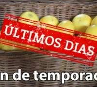 Se termina la temporada del pomelo blanco