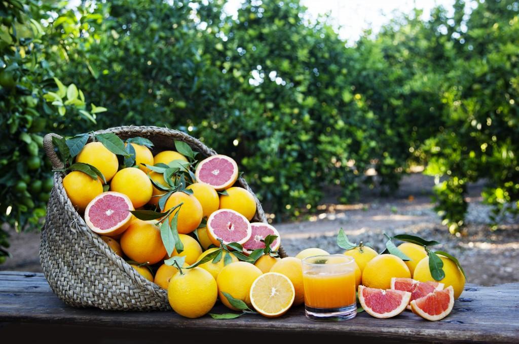 Propiedades de la naranja amarga
