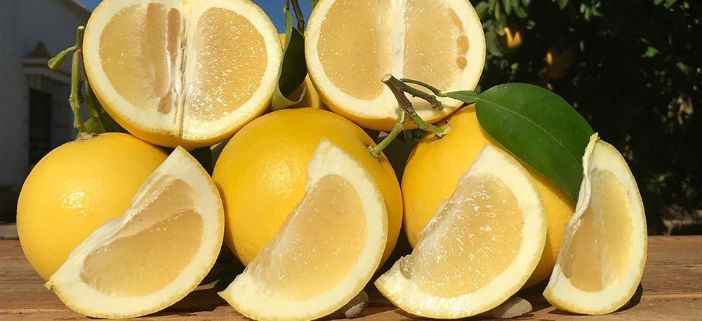 aceite esencial pomelo blanco comprar