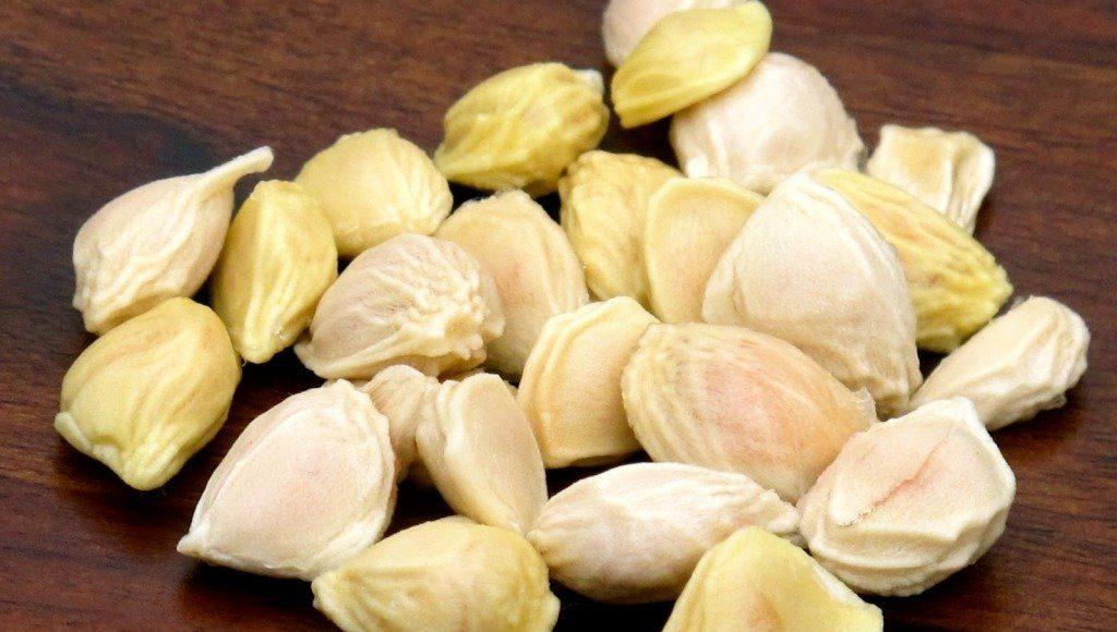 semilla de pomelo blanco