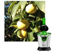 Exprimidor de pomelos y toronjas